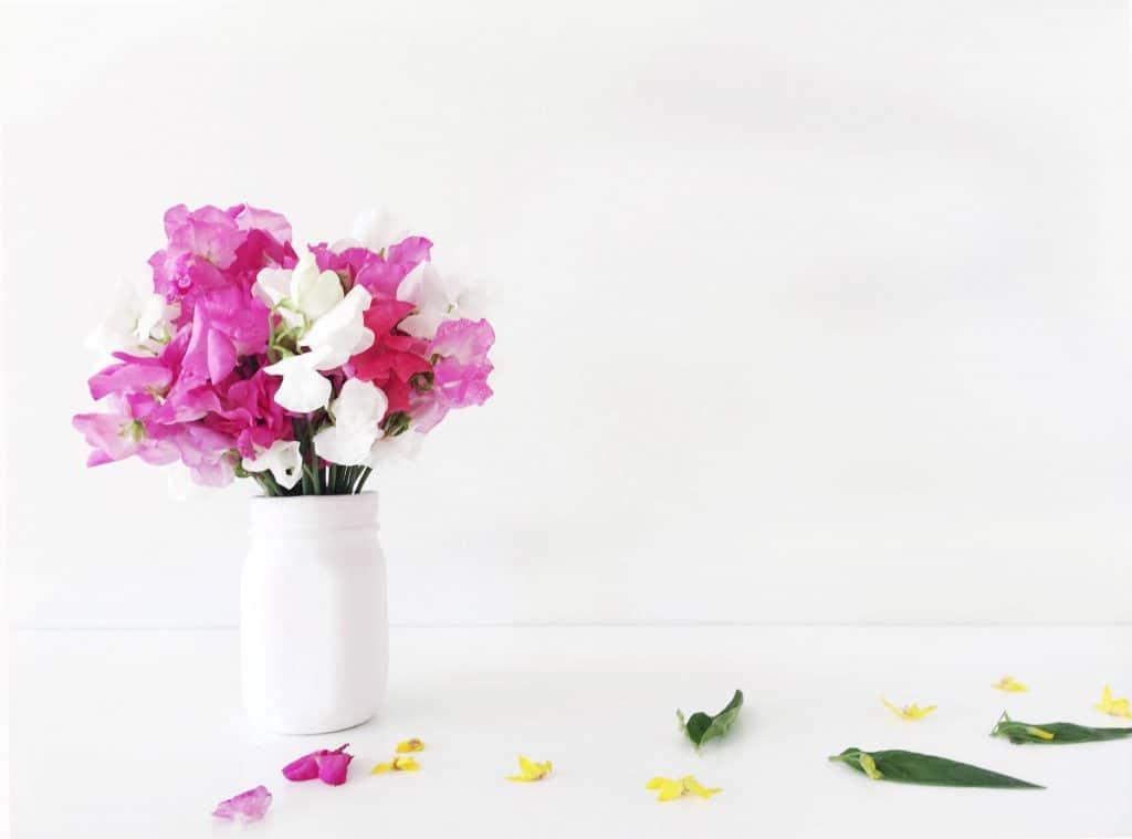 Free floral stock photos